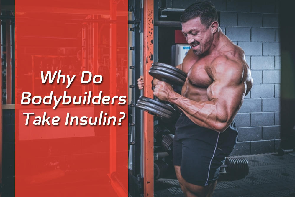 why do bodybuilders take insulin